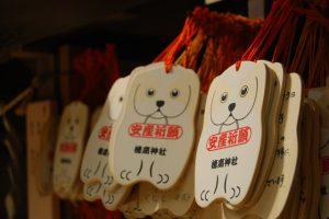水天宮 犬の日 神社の絵馬