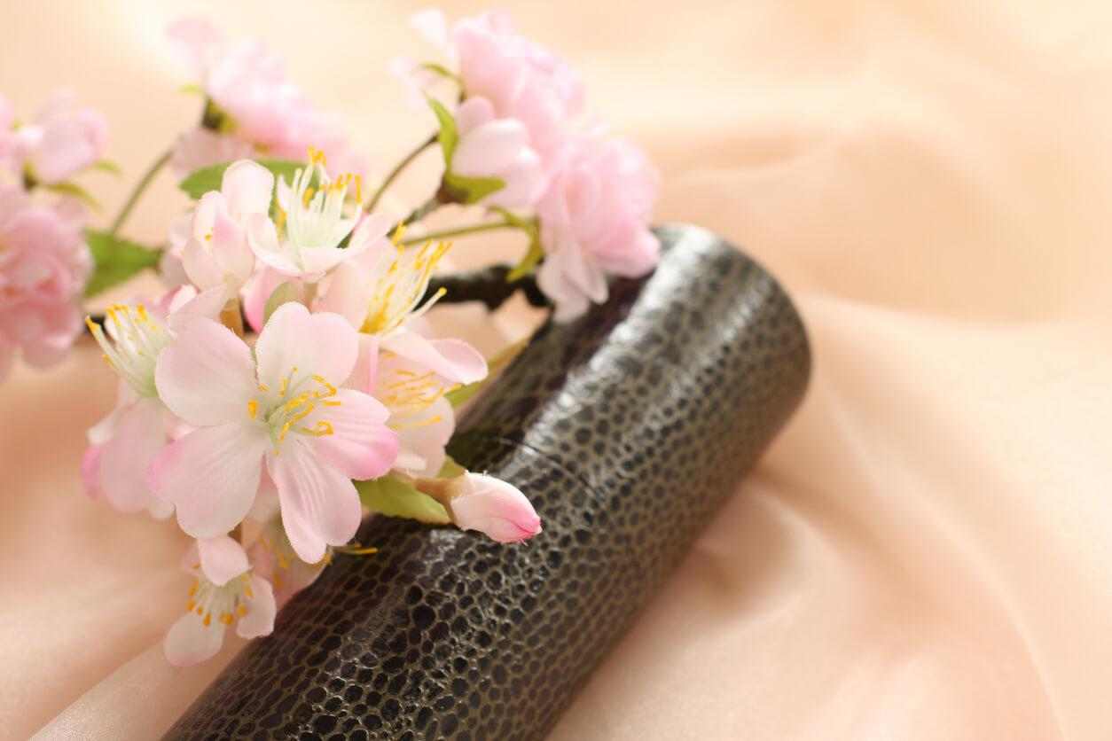 卒入園式 卒業 春 3月 お祝い