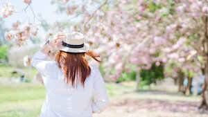 桜と後ろ姿の女性